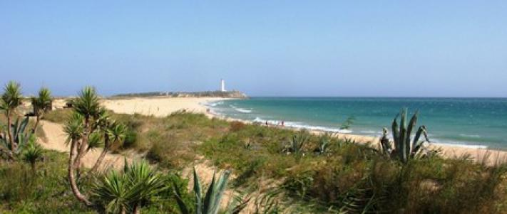Playa de Zahora Caños de Meca   Playas de Cadiz   Los Caños
