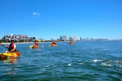 Wave Break Island Kayak, excursión de senderismo y buceo desde la Costa de Oro