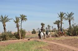 Equitation à mi-journée et Quad Bike Adventure de Marrakech