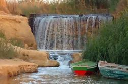 Oásis privados de Fayoum no dia inteiro e cachoeiras de Wadi El-Rayan Tour do Cairo
