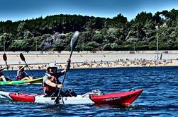 Kayak Tour de Lisboa