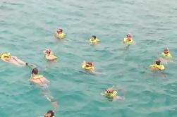 Ocho Rios Shore Excursion: Excursión privada de snorkel