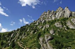 Excursión de un día en grupo de pequeños grupos en Ciucas Mountains desde Bucarest