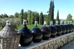 Private Half-Day Tour Degustación de vinos St Jeanet y St Paul Village de Niza