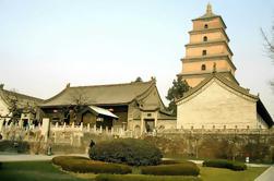 Tour privado de Xi'an: Guerreros de terracota y excursión de un día a la pagoda de ganso salvaje