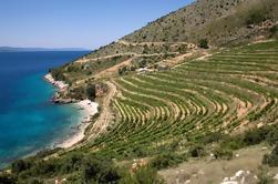 Dalmatie de 8 jours Accueil de Zinfandel Tour de raisin de Split