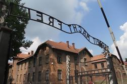 Excursión en grupo de Auschwitz Birkenau desde Cracovia