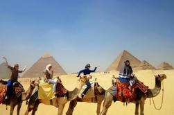 Excursión de medio día a Pirámides de Giza con Camello