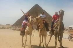 Tour privado de medio día: Pirámides de Giza y Esfinge de Camel o Caballo