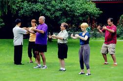Private Tai Chi Class à Pékin