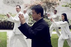 Excursión de Tai Chi de día completo en Beijing