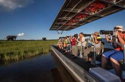 Fotografische River Cruise op de Chobe