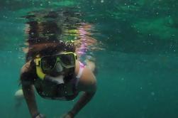 Tour de buceo de Pulau Payar de Langkawi