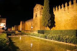 Excursión a pie por la noche de la Ciudad Vieja de Córdoba