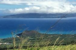 Pruebe el mejor de Maui Farm Tour