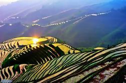 Excursión en autobús de un día completo: Longji Rice Terraces y Local Minority Villages