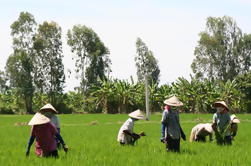 Viaje de un día en el Delta del Mekong, incluido Tan Hoa y Co Gong de Ho Chi Minh City