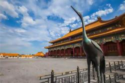 5 uur Small Group Walking Tour: Beijing Tiananmen plein en de Verboden Stad