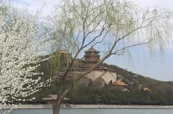 Beijing Small Group Tour: Summer Palace en Ming Graven met Lunch