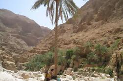 Día completo 4X4 Tour Wadi Shab y la costa este Desde Mascate