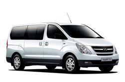 Traslado privado de llegada por Mini-Van: Aeropuerto de Amman a Dead Sea Hoteles