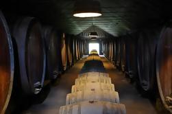 Degustación de vinos de la región de Setúbal