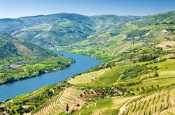 Passeio Semi-Privado: Região Vinícola do Vale do Douro