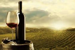 Tour semanal de 8 horas en Évora y viñedos