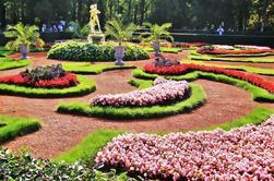 Tour privado Peterhof desde San Petersburgo