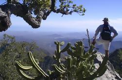 Caminata de la Reserva de la Biosfera Sierra de la Laguna