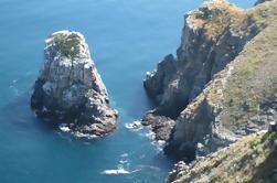Todos Santos Pacific Bluffs Caminata incluyendo Picnic