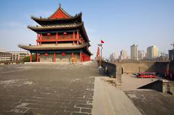 Excursión privada de día completo de guerreros de terracota y muro de la ciudad de Xi'an