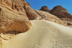 Día completo de las dunas de arena Safari de Dahab