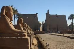Luxor en avión Excursión de un día desde Dahab