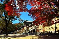 Corea del Sur: Tour de 4 días en Corea del Este incluyendo Seúl y Busan