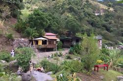 Excursión a Patrimonio de Montego Bay