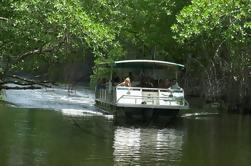 Appleton Rum Tour y Black River Safari Tour