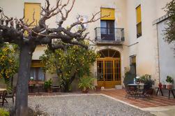 Penedes Region Wein und Essen Tour mit Transport aus Barcelona