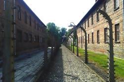Visita autoguiada de Auschwitz-Birkenau desde Cracovia con traslados privados
