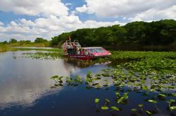 Everglades Air Boat y Alligator Tour desde el centro de Miami