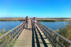 Albufeira Costa e Campo Passeio de Bicicleta de Montanha