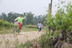 Bicicleta y Vino Cousiño Macul Tour