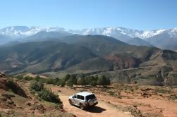 Excursion d'une journée en haute montagne privée