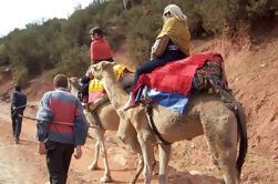 Viaje privado de las montañas del alto Atlas con paseo del camello