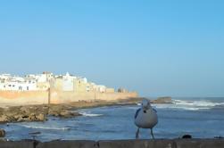 Excursión de un día en grupo pequeño a Essaouira desde Marrakech