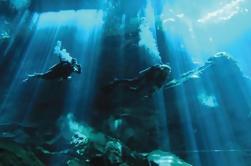 2-Tank Cenote Certified Dive en Tulum