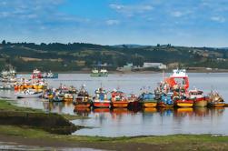 Excursão de um dia inteiro em Chiloé Incluindo Ancud - Castro e Dalcahue de Puerto Varas