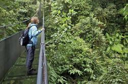 Sky Walk Tour con puentes colgantes y reserva natural