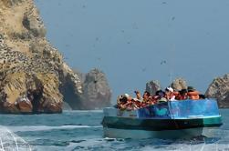 Reserva Paracas de día completo y Islas Ballestas