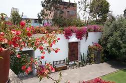 Tour privado de la ciudad de Lima y Tour del Museo Larco